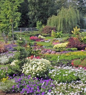 Garden Styles Come And Go, But The Pleasure People Get From Being  Surrounded By Flowers Stretches Across Time And Distance. Here, A Proven  Winners Display ...