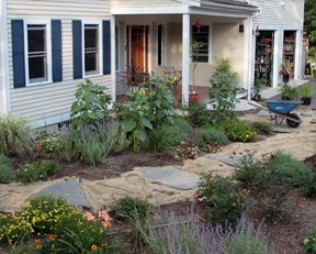 new_garden_in_progress