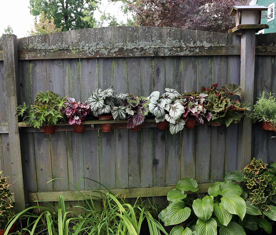 You can learn more about GWA by going to their website: www.gardenwriters.org